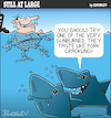 Cartoon: Still at large 95 (small) by bindslev tagged shark,sharks,attack,attacks,fish,pork,crackling,sunburn,water,sea,bather,swimmer,swimming,beach,bondi,hungry,ditty,eat,eating,lunch,dinner,snack,snacks,tourist,tourists,sunburned,food,chain,chains,predator,predators,prey,preys