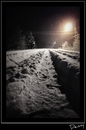 Cartoon: The first snow (small) by Krinisty tagged snow,canada,krinisty,art,photography