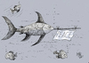 Cartoon: peace (small) by kotbas tagged fish,peace,goodwill,sea,swordfish,animals