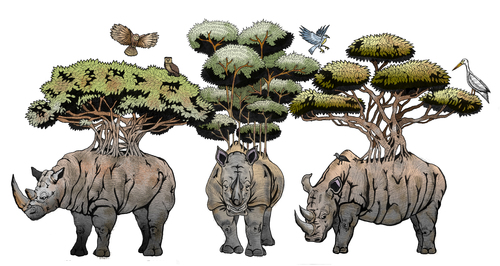 Cartoon: Living Forest (medium) by javierhammad tagged illustration,surreal,nature,animals,rhino,birds,tree,branchs,jungle,ecology,illustration,surreal,nature,animals,rhino,birds,tree,branchs,jungle,ecology