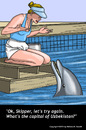 Cartoon: Dolphin Trainer (small) by perugino tagged dolphins,animal,trainers