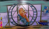 Cartoon: no escape (small) by ab tagged hamster,käfig,rad,rollstuhl,drehen