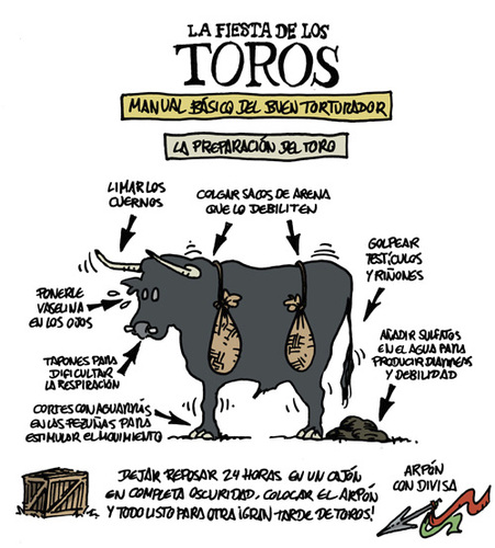 Cartoon: TOROS (medium) by mortimer tagged bullfight,toros,comic,cartoon,mortimeriadas,mortimer