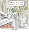 Cartoon: Pigeon Mantra (small) by noodles tagged pigeon,mantra,noodles,city,bird