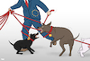 Cartoon: Dog Walker (small) by Tjeerd Royaards tagged eu,catalonia,brexit,chaos,dogs,fighting,conflict,mess