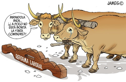 Cartoon: Resignacion (medium) by JAMEScartoons tagged yunta,buey,toro,reforma,laboral,james,cartonista,jaime,mercado