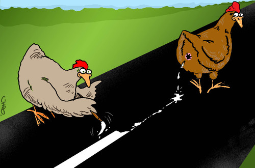 Cartoon: way to chickencoop (medium) by JARO tagged chicken,shit,way