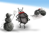 Cartoon: Winter Scarab.. (small) by berk-olgun tagged winter scarab