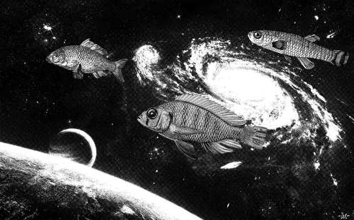 Cartoon: Spacefish (medium) by zu tagged spacecraft,fish,space