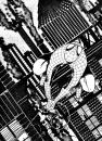 Cartoon: SPIDEY (small) by Jorge Fornes tagged spidey