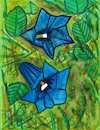 Cartoon: Alpine gentians (small) by Pascal Kirchmair tagged blaue,enziane,abstract,painting,peinture,abstraite,abstraktes,gemälde,trumpet,alpine,gentian,genciana,genziana,expressionism,expressionismus,alpen,enzian,dibuix,illustration,drawing,zeichnung,pascal,kirchmair,ilustracion,dibujo,desenho,disegno,ilustracao,illustrazione,illustratie,dessin,du,jour,art,of,the,day,tekening,teckning,watercolor,watercolour,aquarell,aquarelle,acquerello,acquarella,acuarela,aguarela,aquarela,alps,alpes,alpi