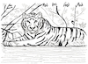 Cartoon: Le tigre (small) by Pascal Kirchmair tagged predator,raubkatze,predateur,felin,felino,fauve,predador,predatore,tiger,tigre,big,cat,cats,katzen,gatos,gatti,chats,humour,umorismo,humorous,spirito,humor,karl,lagerfeld,illustration,ink,drawing,zeichnung,pascal,kirchmair,cartoon,caricature,karikatur,ilustracion,dibujo,desenho,disegno,ilustracao,illustrazione,illustratie,dessin,de,presse,tekening,teckning,cartum,vineta,comica,vignetta,caricatura,tusche,tuschezeichnung