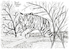 Cartoon: Tiger (small) by Pascal Kirchmair tagged predator,raubkatze,predateur,felin,felino,fauve,predador,predatore,tiger,tigre,big,cat,cats,katzen,gatos,gatti,chats,illustration,ink,drawing,zeichnung,pascal,kirchmair,cartoon,caricature,karikatur,ilustracion,dibujo,desenho,disegno,ilustracao,illustrazione,illustratie,dessin,de,presse,tekening,teckning,cartum,vineta,comica,vignetta,caricatura,tusche,tuschezeichnung