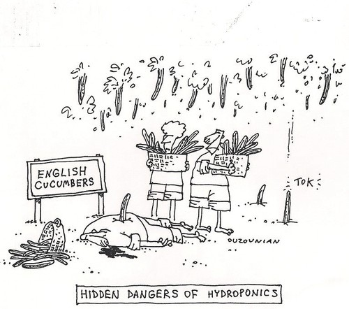 Cartoon: hydroponics (medium) by ouzounian tagged accidents,danger,vegetables,cucumbersfarming,hydroponics