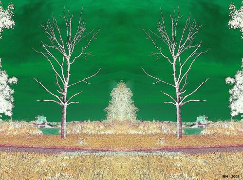 Cartoon: MH - Tree Bizarre 2 (medium) by MoArt Rotterdam tagged tree,bizarre,photoshop