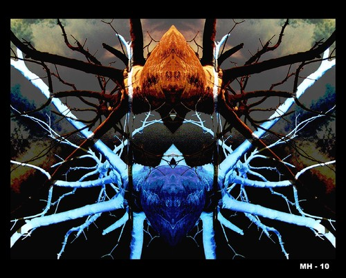 Cartoon: MH - Laughing Spiders (medium) by MoArt Rotterdam tagged laughing,spider,photoshop,photoplay