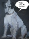 Cartoon: Patch (small) by jjjerk tagged animals animal dog patch black white dublin ireland