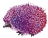 Cartoon: Acidulous hedgehog (small) by LeeFelo tagged acidulous,hedgehog,pink,purple,acid,different,special