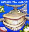 Cartoon: Buckelwal-Selfie (small) by Jupp tagged wal selfie cartoon jupp