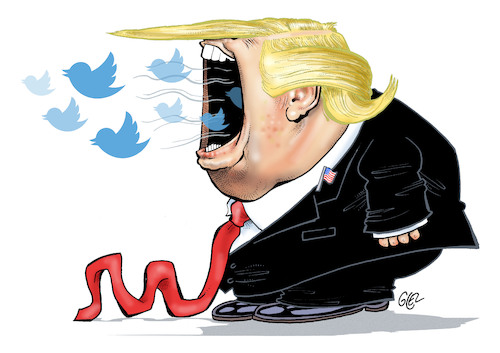 Cartoon: Donald Tweet (medium) by Damien Glez tagged donald,tweet,twitter,trump,president,united,states,america,donald,tweet,twitter,trump,president,united,states,america