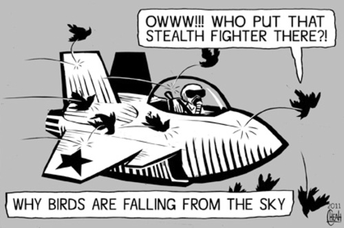 Cartoon: Stealth bird (medium) by sinann tagged stealth,fighter,birds,falling