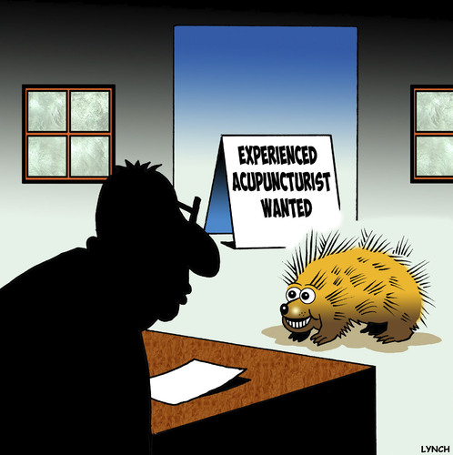Cartoon: Acupuncture (medium) by toons tagged porcupine,hedgehog,acupuncture,animals,employment,needles,porcupine,hedgehog,acupuncture,animals,employment,needles