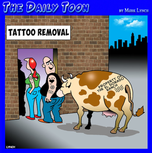Cartoon: Tattoo removal (medium) by toons tagged cows,tattoos,cow,branding,tattoo,removal,farm,animals,cows,tattoos,cow,branding,tattoo,removal,farm,animals