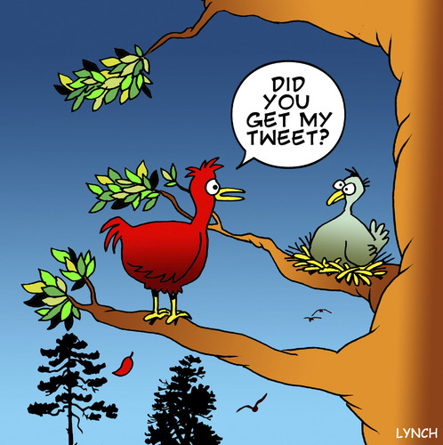 Cartoon: Tweet (medium) by toons tagged twitter,tweeting,social,networking,facebook,communication,broadband,mobile,phone,birds,animals,relationships