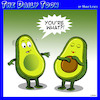 Cartoon: Avocado (small) by toons tagged pregnant,avocado,seed,babies,fruit