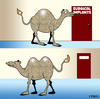 Cartoon: implants (small) by toons tagged implants,plastic,surgery,surgical,cosmetic,boob,job,camels,bust,enhancement,animals