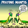 Cartoon: praying mantis (small) by toons tagged insects,prayer,give,thanks,food,dinner,spiders,centerpede
