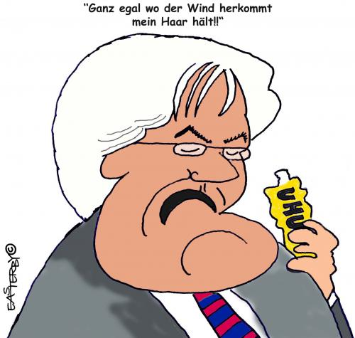 Cartoon: German Election 2009 (medium) by EASTERBY tagged steinmeier,politicks