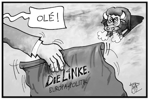 Europaparteitag Linke