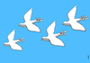 Cartoon: victory sky (small) by Medi Belortaja tagged victory,sky,pigeon,colombo,dove,freedom