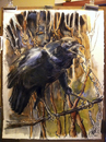 Cartoon: Solo Crow 1 (small) by halltoons tagged oil painting crow bird