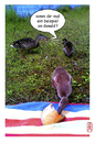 Cartoon: Donald (small) by edda von sinnen tagged enten,dugs,brot,bread,mutter,mum,hunger,hungry,edda,von,sinnen