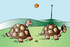 Cartoon: Turtles (small) by Alexei Talimonov tagged turtles